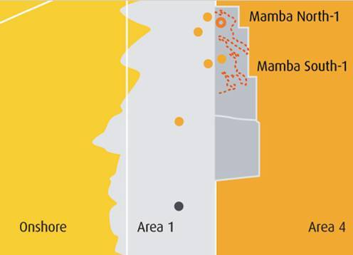 The Mamba complex offshore Mozambique. (Image source: Galp Energia)